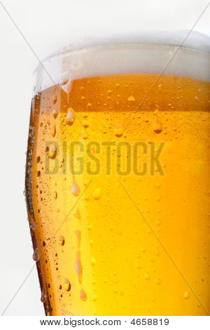 Full Glass Of Beer