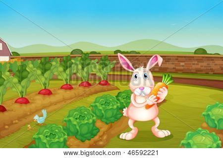 Illustration of a bunny holding a carrot along the garden