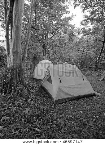 Black And White Tents On Campgrounds