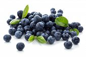 picture of food groups  - Blueberry antioxidant superfood isolated on white - JPG