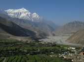 picture of kali  - Green fields and snow capped mountain Nilgiri - JPG