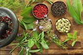 stock photo of composition  - Herbs and spices composition - JPG