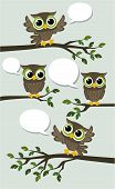 image of owl eyes  - illustration of four cute owls meeting with text balloons - JPG