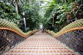 stock photo of bannister  - Front view of the 306 steps leading up to the temple complex Chiang Mai Thailand - JPG
