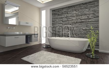 Modern design bathroom with stone wall and bathtub