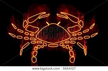 Colección de signos del zodiaco envuelto en fuego