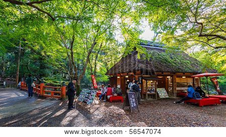 Koyo corner in Nara Park