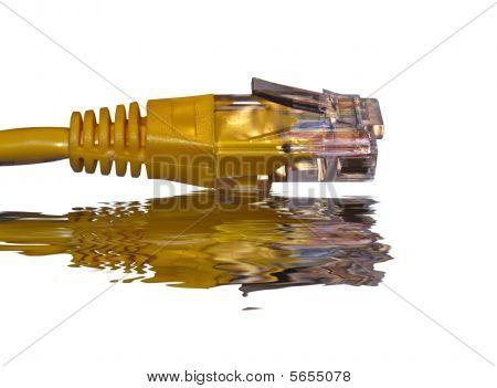 Informática - amarillo Cat5 parche plomo