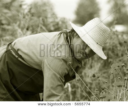 Gardener in straw hat