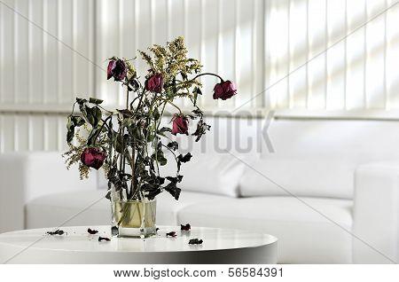 dead flowers