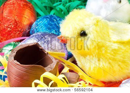 Easter Chick Eats Egg