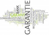 Word cloud -  guaranty