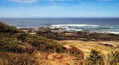 Coastal Landscape On Sunny Day poster