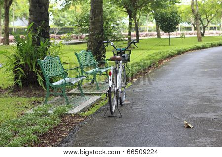 Bicycle Parking Near The Chair In The Garden