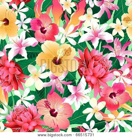 Tropical Hibiscus Floral 4 Seamless Pattern