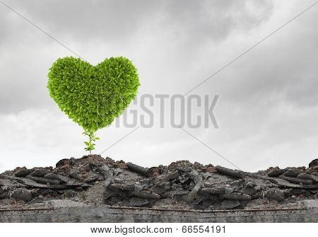 Conceptual image with green heart growing on ruins