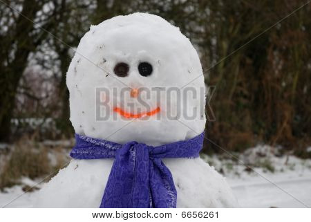 Snowman weather