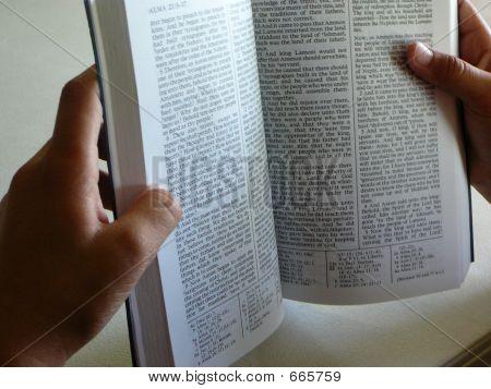 Buch Mormon In Händen
