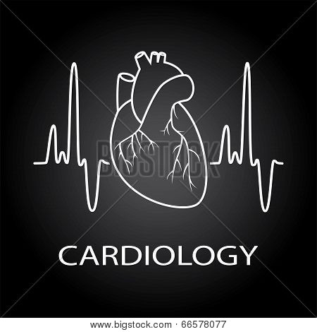 Vector Human Heart Medical Symbol Of Cardiology