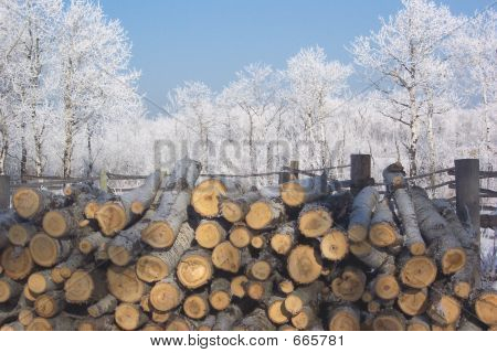 Frost Wood Pile