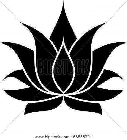 Lotus Flower Silhouette