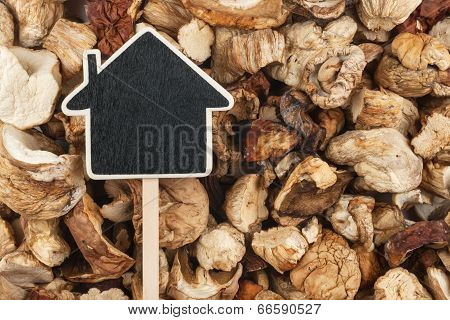 House Pointer, The Price Tag Lies On  Dried  Mushroom