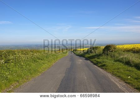 Rural Road With Hedgerows