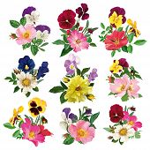 stock photo of dog-rose  - bouquet of wild roses and multicolored pansy - JPG