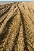 foto of jcb  - Light and shadow beach made of pebbles with caterpillar tracks converging into distance - JPG