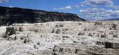 stock photo of mammoth  - Minerva Terrace at Mammoth Hot Springs in Yellowstone National Park - JPG
