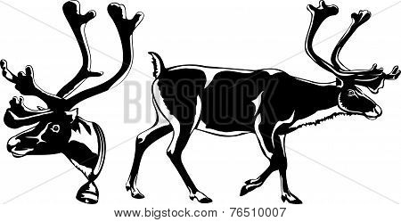 reindeer - vector silhouette
