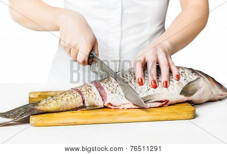 Woman Cook Cut Fish