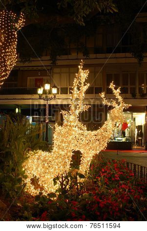Christmas reindeer decoration, Spain.