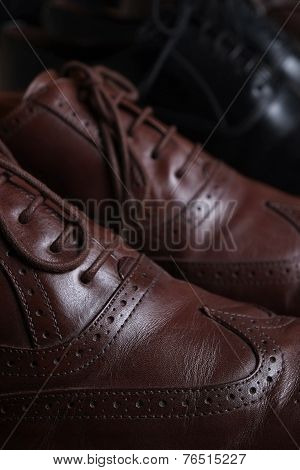 Pair of brown leather classic Brogue shoes on shelf with other shoes