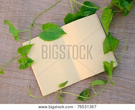 Open Notepad background