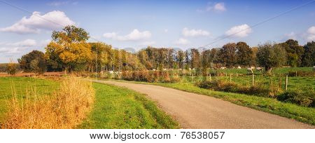 Dutch landscape with road and meadow. brabant netherlands