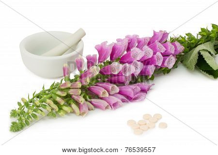 Foxglove With Pills