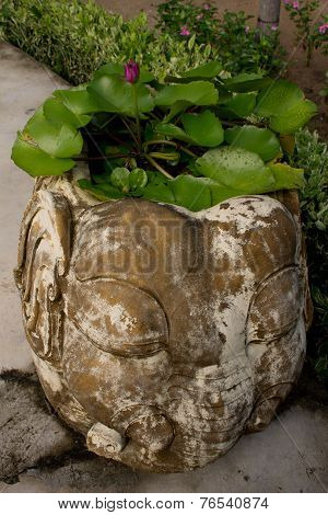 planter in elephant planter