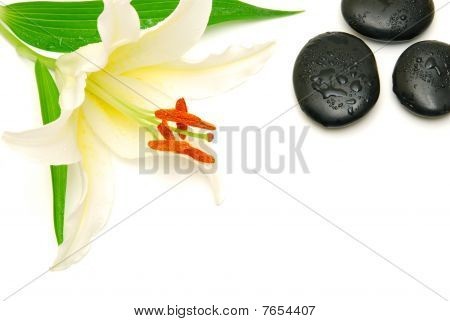Lily And Massage Stones Isolated