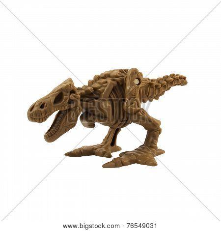 Skeleton dinosaur.