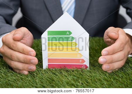 Businessman Protecting Energy Consumption Label On Grass