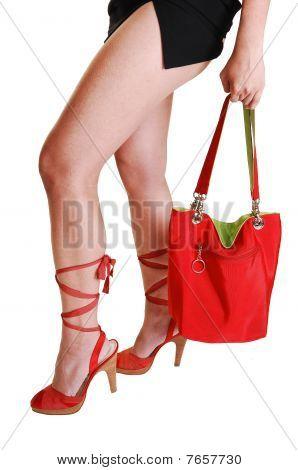 Woman Legs With Handbag.