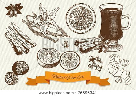 mulled wine and spices illustrations.