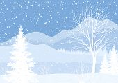 picture of blue spruce  - Winter mountain Christmas landscape with fir trees and snow - JPG