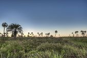 foto of mesopotamia  - Sunrise on El Palmar National Park  - JPG