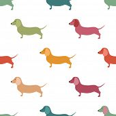 picture of wiener dog  - Seamless pattern with cute dachshound dogs - JPG