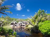 picture of garden eden  - rainforest with large granite rocks and clear river in the Seychelles - JPG