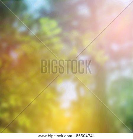 summer design, forest trees, nature green wood sunlight background. Vector