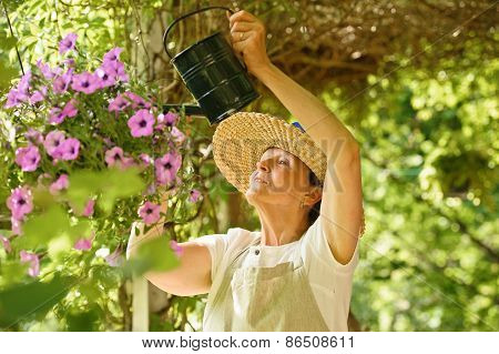 Senior Woman Waters Flowers In A Hanging Pot