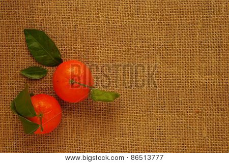 Two Clementines with Leaves on Hessian